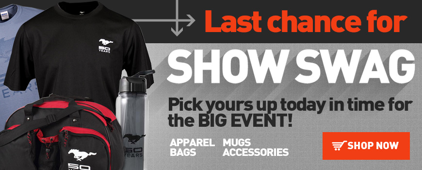 50th Accessories Last Chance